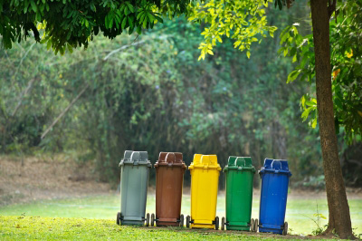 recycling bins, what you can recycle